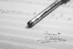 Organisatie van muziekevenementen en concerten